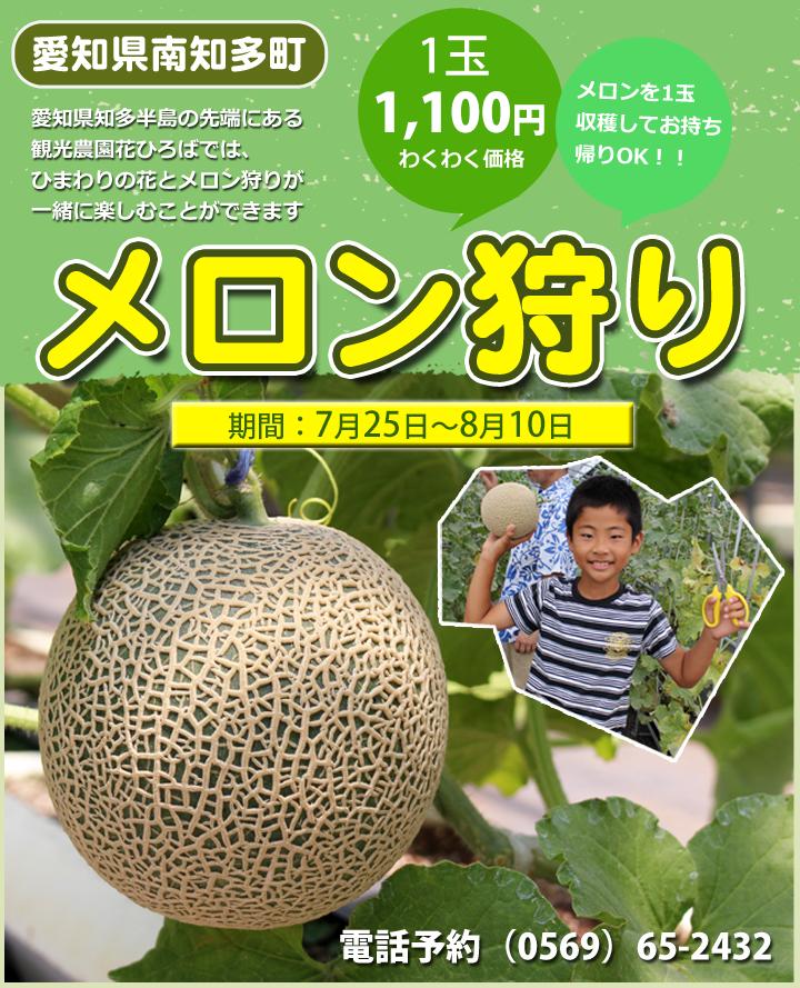 メロン1個1000円