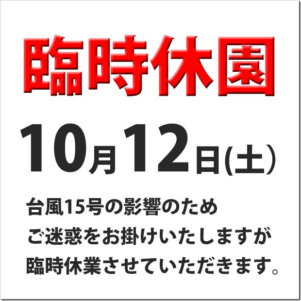 20191011-1